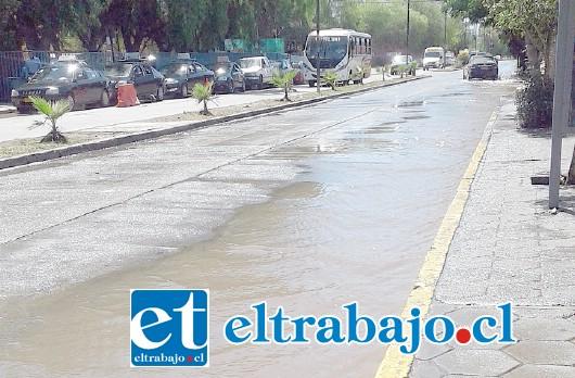 Como muestra la imagen gran cantidad de agua corriendo por Avenida Miraflores frente al Hospital San Camilo.