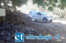 El Servicio Médico Legal levantó el cuerpo del malogrado trabajador, en el fundo ubicado en el sector Las Palmas de Llay Llay la mañana de ayer miércoles, para la práctica de autopsia que confirme la causal de muerte.