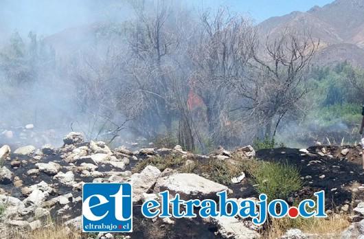 La imagen muestra las llamas que se produjeron en el incendio. (Foto gentileza @aconcaguaradio)