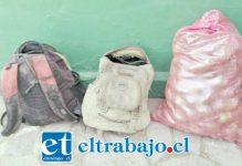 Carabineros recuperó un total de 65 kilos de paltas sustraídas por el actual sentenciado desde un domicilio de la comuna de Santa María.