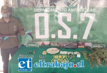 Personal del OS7 de Carabineros Aconcagua efectuó un allanamiento en la población Eliecer Estay de Llay Llay, incautando pasta base de cocaína, un armamento hechizo, municiones y un cultivo de cannabis sativa.
