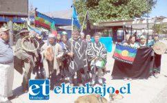 El grupo de mapuches en la plaza cívica antes de entregar la carta en la gobernación.
