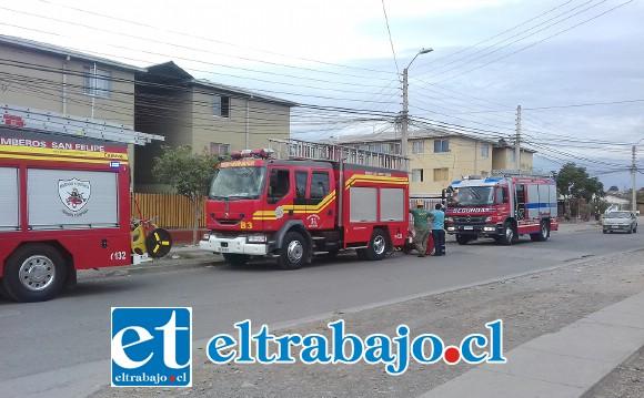 A la emergencia concurrió personal de Bomberos de la Primera, Segunda y Tercera Compañía de San Felipe.