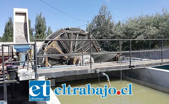 Falla en el sistema provocó nuevos focos de malos olores en el sector de Nueva Algarrobal.