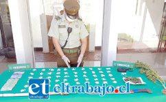 Personal del OS7 de Carabineros incautó 617 papelillos de pasta base de cocaína, marihuana elaborada y dinero en efectivo en un domicilio ubicado en el Cerro San José de la comuna de Catemu.