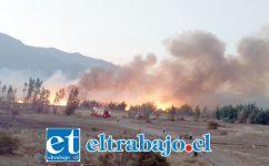 Una imagen del incendio ocurrido el día jueves en la noche y que una vez más puso en peligro un sector densamente poblado.