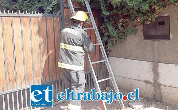 Personal de la Segunda Compañía de Bomberos concurrió hasta la vivienda de la abuelita en el sector de Tocornal en Santa María.