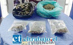 La Policía de Investigaciones de San Felipe incautó más de medio kilo de marihuana a granel desde un inmueble ubicado en la Villa Parque Alameda de esta comuna, siendo detenida una mujer de 62 años de edad quien quedó a disposición de la Fiscalía.