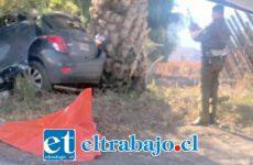 El accidente ocurrió la tarde de ayer domingo en la curva del sector La Peña en Curimón.