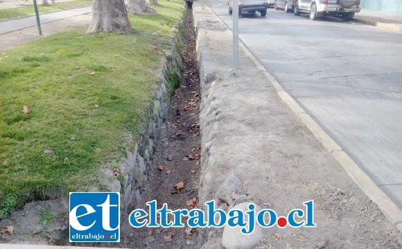 Así se encuentra la acequia costado sur de la alameda Chacabuco, seca.