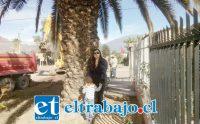 María José Toro, vecina preocupada porque le pueden extraer la palmera ubicada frente a su domicilio ubicado en Avenida Hermanos Carrera.