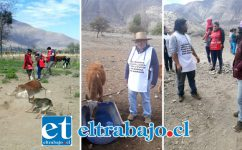En muchos lugares como Guzmanes o al interior de Los Patos, los crianceros han recibido exclusivamente la ayuda de voluntarios, pues del Gobierno no han recibido absolutamente nada.