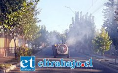 Uno de los tractores pasa por las calles de Santa María con su máquina fumigadora.