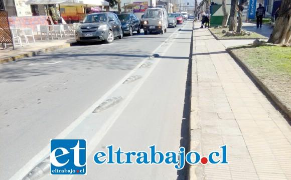 Esta es la ciclo vía de la discordia ubicada en calle Merced.