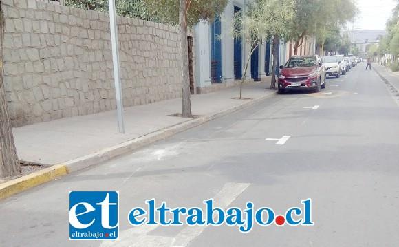 Los calzos ya han sido pintados en diversas calles de la ciudad, en este caso la imagen corresponde a Salinas.