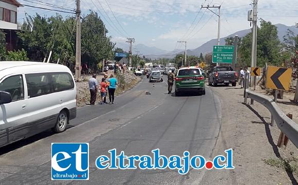 Personal de Carabineros adoptó el procedimiento de rigor, manteniéndose el tránsito suspendido por algunos momentos en la carretera.