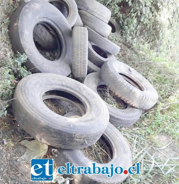 Una gran cantidad de neumáticos fueron decomisados por Carabineros de Llay Llay.