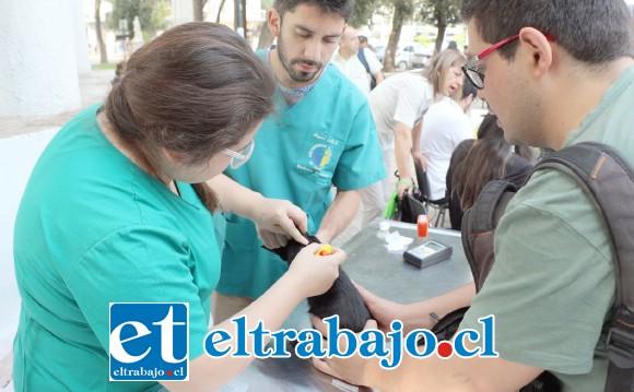Este viernes se realizará la segunda jornada de implantación de microchips por parte del programa Tenencia Responsable de Mascotas de la Municipalidad de San Felipe.