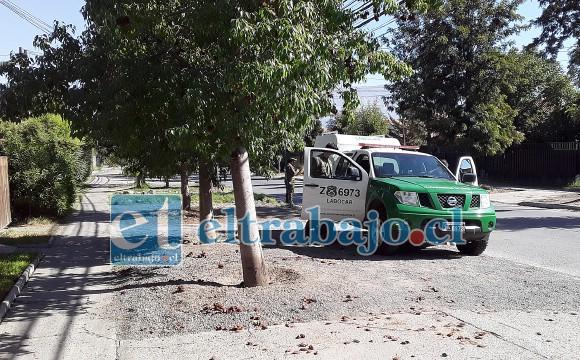 Personal del Labocar realizó diversas pericias en el inmueble, retirándose después del sitio el suceso.