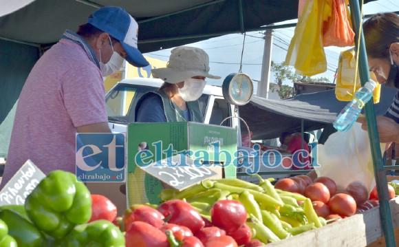Según informó la Municipalidad, en las últimas dos semanas la Feria Diego de Almagro ha congregado a más de 16 mil personas.