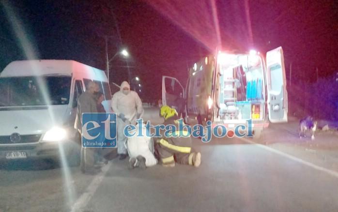 Personal de Bomberos, Samu, Carabineros en el lugar del accidente prestando auxilio a la mujer y su hijo. (Foto @putaendoinforma.com).