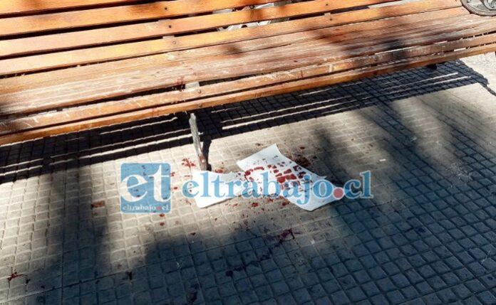 Rastros de sangre quedaron en el lugar de la agresión. (gentileza @putaendoinforma.com)