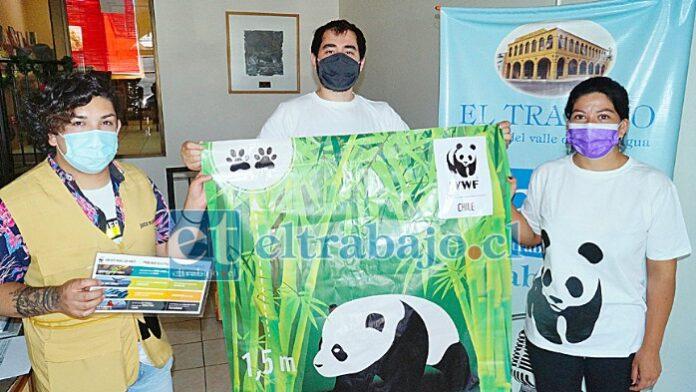VISITA DE CAMPAÑA.- A nuestra Sala de Redacción llegaron estos activistas medioambientalistas de la WWF, todos ellos aconcagüinos y empeñados en alertar a nuestros lectores sobre el peligro que se viene.